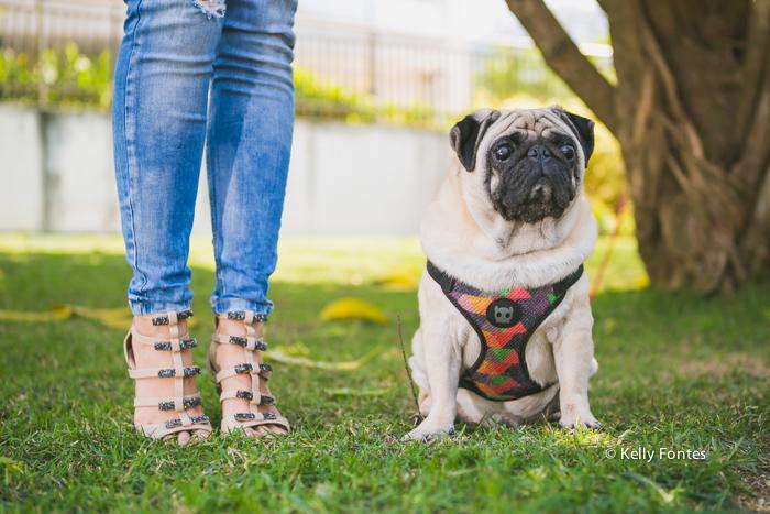 Fotos look do dia RJ sandalia moda wfashionista blogueiras por Kelly Fontes cachorro cao sapato alto e jeans