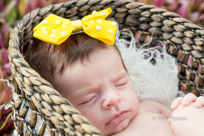 Fotografia Newborn RJ Recém Nascido Bebê laço amarelo bolinhas brancas na cabeça dentro cesta dormindo por Kelly Fontes